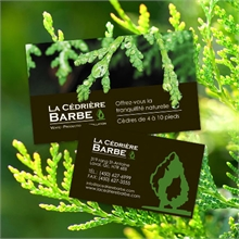 barbe-cartes
