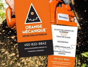 orange-cartes d'affaires